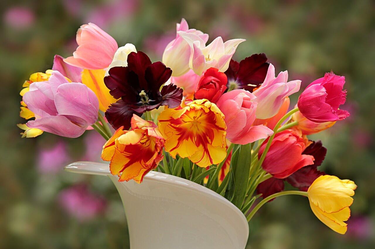 Wundervolle Blumen für besondere Anlässe